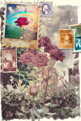 Acrylic Prints Imagination Vintage postcard with flowers of spring and stamps series