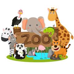 Illustrator of zoo animals