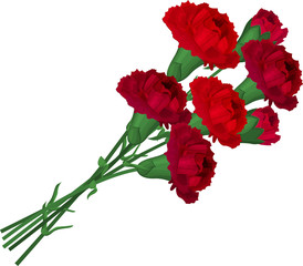 Bunch with red carnations