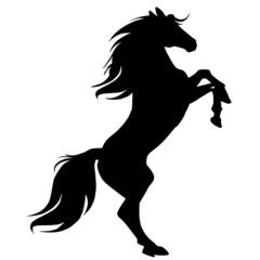 black horse silhouette 16-ill