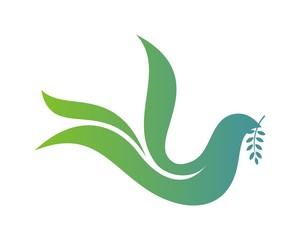 Dove Foundation Logo