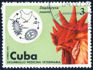 CUBA - CIRCA 1975: