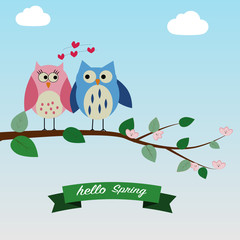 The couple of owls feeling love on the spring time background