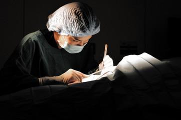 veterinarian doctor in operation room,selective color technique