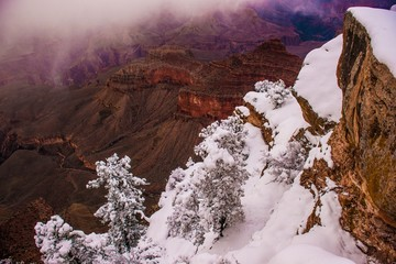 Wall Mural - Grand Canyon Winter Season