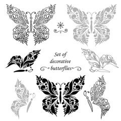 Set of decorative butterflies and elements, hand drawing