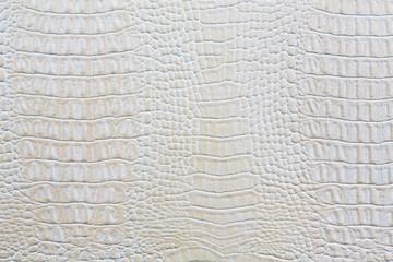 Autocollant pour porte Crocodile Crocodile skin white leather background