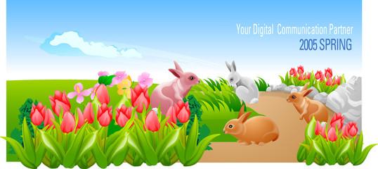 꽃과 토끼