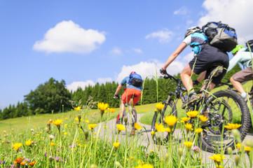 Photo on textile frame Cycling raus in die Natur mit dem MTB