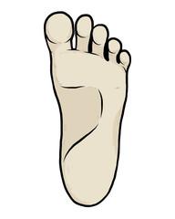 left sole