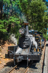 Puffing Billy steam train