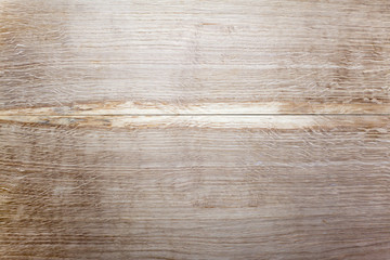 texture oak tree