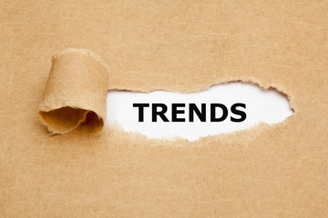 Trends Torn Paper Concept