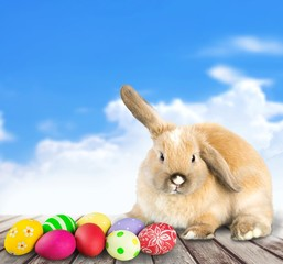 Easter. Easter rabbit sits with basket of colored eggs on spring