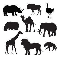 Wild African Animals Black