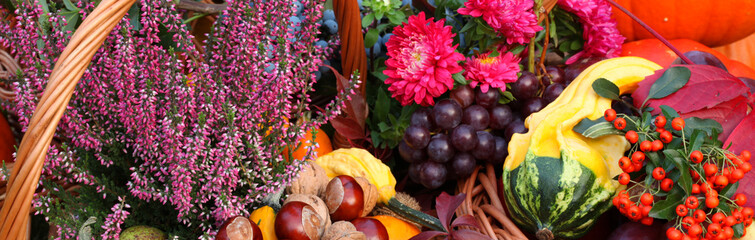 Autumn flowers, vegetables and fruits