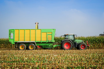 Wall Mural - Erntwagen mit Traktor beim Mais häckseln