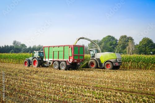 Wall mural Maishaecksler in Aktion mit Erntewagen undTraktor