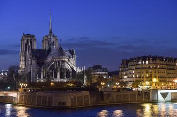 France, Paris, Illuminated Notre Dame de Paris seen from Seine a