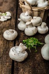 Mushrooms raw,  fresh and bio