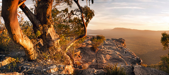 Stores photo Australie Australian Bush Landscape