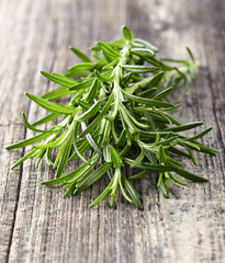 Rosemary on a wooden background