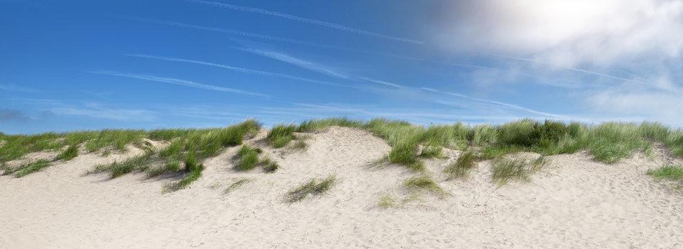 sand dunes near the beach in the summer