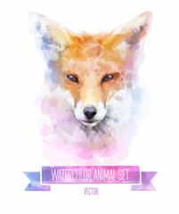 Vector set of watercolor illustrations. Cute fox.