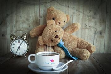 couples teddy bear.