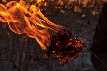 Combusting dry grass, burning
