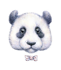 Water color drawing of a panda on white background