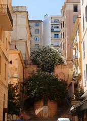 Rue et escalier de Bastia