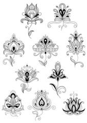 Ethnic paisley outline floral design elements