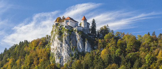 castle on the rock on lake Bled in Slovenia Wall mural