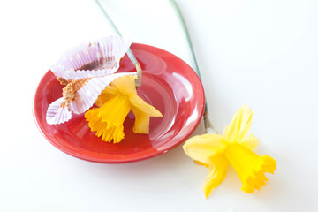 daffodils on an empty saucer on cupcakes