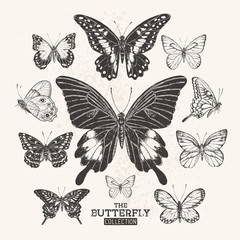 The Vintage Butterfly Collection