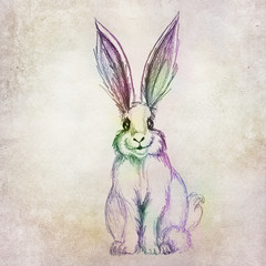 Colorful rabbit drawing