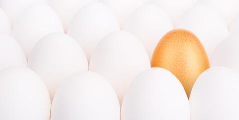 gold Easter egg between many white eggs