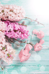 Background with fresh flowers hyacinths and decorative birds