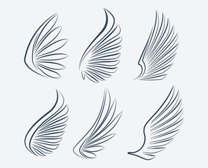 Set of six outlined stroke vector wings
