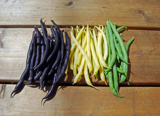 Purple, Yellow and Green French Beans on Wooden Surface II