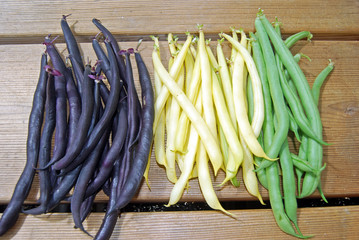 Purple, Yellow and Green French Beans on Wooden Surface I