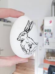 rabbit drawing on white egg. hand holding egg in kitchen