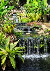 Foto op Plexiglas Singapore Waterfall in Phuket Butterfly Garden
