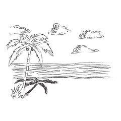 Tropical, beach, sketch, vector, illustration