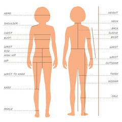 vector body measurements size chart,  sewing