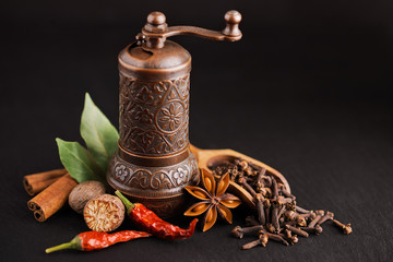dark still-life with different spices and retro pepper mill - fototapety na wymiar