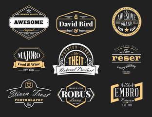 Set of Retro Vintage Badges and Logotypes