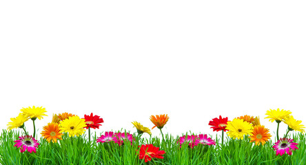 Wall Mural - Muttertag Blumenwiese
