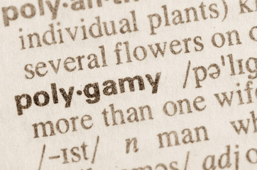 Dictionary definition of word polygamy